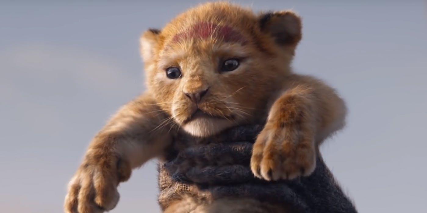 rey-león
